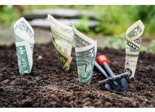 Готовые идеи для инвестиций